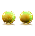 Two big yellow glass spheres vector image