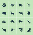 animal icons set with ladybird raccoon bull and vector image vector image