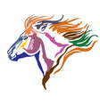 colorful decorative portrait of pony vector image vector image