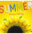 Floral summer background with sunflower vector image vector image