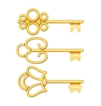 golden keys set vector image