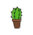 green cactus vector image vector image