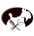 scissors and comb for grooming dogs vector image vector image
