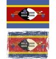 Swaziland grunge flag vector image vector image
