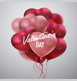 valentines day holiday sign vector image vector image