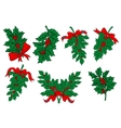 Christmas greens and holly berry branches vector image vector image