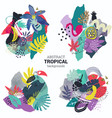 collection tropical plants flowers vector image vector image