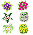 Set Of Flowers on White Background vector image vector image
