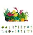 Big houseplants Set of flat potted interior vector image