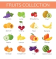 Set of fruits icons Flat style design vector image