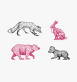 forest animals bear grizzly and red fox jumping vector image vector image