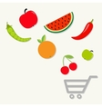 Organic fruits and vegetables falling into the vector image vector image