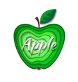 paper art green apple vector image