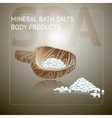 Spa background with sea salt on wooden spoon vector image
