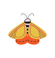 beautiful multi-colored butterfly with an unusual vector image vector image