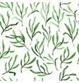 estragon therapeutic green leaf branch isolated vector image vector image
