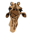 giraffe for t-shirt portrait vector image vector image