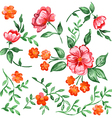 Handpainted watercolor flowers and leaves vector image
