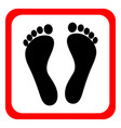 human footprints icon vector image vector image