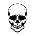 human skull isolated on white background design vector image vector image