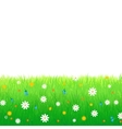 Meadow with flowers isolated on white background vector image vector image