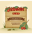 Retro crate of cherries vector image vector image