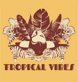 tropical vibes hand drawn pretty vector image