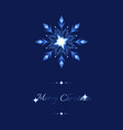 blue shine holidays snowflakes and stars ornate vector image vector image