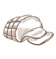 ham or sausage in rope net meat food isolated vector image vector image