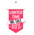 limited time big sale 60 pink flag background vec vector image vector image