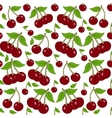 Seamless background with cherry berries vector image