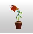 plant pot design vector image