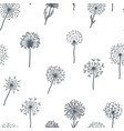 dandelion old plant with seeds sketches outline vector image