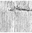 Dry Wooden Texture vector image