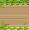 Green bamboo grass on brown vector image