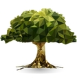 green tree in a triangular style vector image vector image