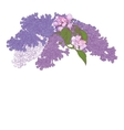 Greeting Card with Blooming Lilac and Apple Tree vector image vector image