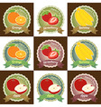 Set of various fresh fruit label badge tag sticker vector image vector image
