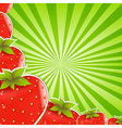 Strawberry And Green Sunburst vector image vector image