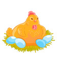 the yellow hen incubates the eggs in the nest vector image vector image