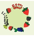 set hand drawn berries label vector image