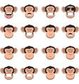 set head monkey vector image