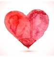 Bright red watercolor isolated heart vector image vector image