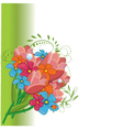 Bunch of spring flowers vector image vector image