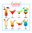 collection various cocktails decorated with vector image vector image