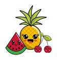 kawaii happy pineaplle watermelon and cherry icon vector image vector image