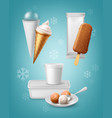 packing for ice cream vector image