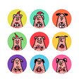 round shape stickers set funny pigs with candy vector image vector image