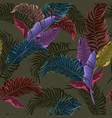 seamless pattern with colorful tropical leaves vector image