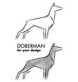doberman sketch vector image vector image